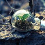 Valutazione impatto ambientale, cos'è e come si effettua
